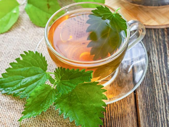Beneficios para la salud del té de ortiga