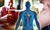 limpia tu cuerpo y mente de grasas, azúcares y alcohol