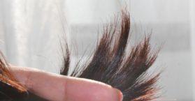 remedios caseros naturales para puntas abiertas y roturas sin cortes