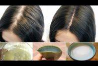 remedios caseros para el tratamiento y prevención de la caída del cabello